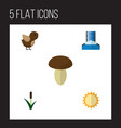 flat icon natural set of bird cascade cattail vector image vector image