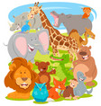 funny comic animal characters group vector image vector image