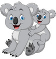 mother and baby koala vector image vector image