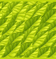 seamless pattern from bright green leaves vector image