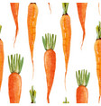watercolor carrot pattern vector image vector image