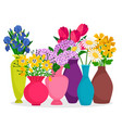 bouquets flowers in vases composition vector image vector image