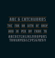 decorative serif font and catchwords vector image vector image