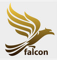 flying falcon vector image