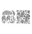 set of black line floral design elements in henna vector image vector image