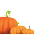 autumn pumpkins border design template vector image