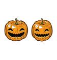 halloween pumpkin cartoon symbol vector image