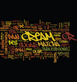 matcha crepe text background word cloud concept vector image vector image