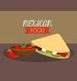 mexican tacos with spicy chili sauce vector image
