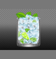 mojito cocktail realistic vector image
