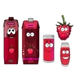 Raspberry drinks and berry in cartoon style vector image