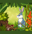 a rabbit in jungle background vector image vector image