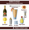 bellini cocktail infographic set of isolated vector image