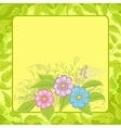 flowers cosmos and frame vector image vector image