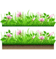 Grass Border with Flowers Isolated On White vector image