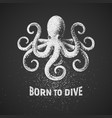 octopus born to dive chalk drawing on blackboard vector image