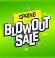 Spring Blowout Sale banner vector image vector image