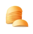 Stack of Potato Chips Isolated on Background vector image vector image