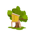 tree house wooden hut on tree for kids outdoor vector image vector image