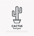 cactus with prickles in pot thin line icon vector image