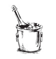hand sketch champagne vector image