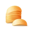 Stack of Potato Crispy Chips Close up Isolated vector image vector image