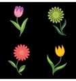 Flower icons set Chamomile tulip Floral vector image vector image