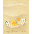 sand summer background vector image vector image