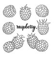 set cartoon black and white outline raspberry vector image
