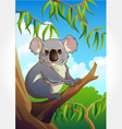 Wild animal set 22 - koala vector | Price: 1 Credit (USD $1)