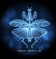 abstract neon polygonal triangle praying mantis vector image