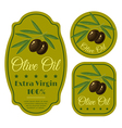 olive black green label vector image vector image