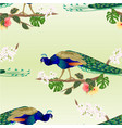 seamless texture peacock tropical bird on branch vector image vector image
