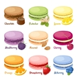 Set of macaroons vector image vector image