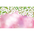 spring background blossom vector image vector image