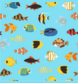 tropical fishes coral reef for aquarium cartoon vector image vector image
