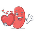 with heart kidney mascot cartoon style vector image vector image