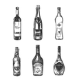 Alcoholic drinks in sketch hand drawn style vector image vector image