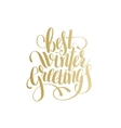 best winter greetings gold handwritten lettering vector image vector image
