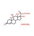 cortisol hormone molecular formula human body vector image vector image