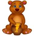 Cute bear cartoon with honey vector image vector image