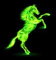 Fair Horse on hind legs 03 vector image vector image