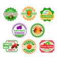 fruit labels for eco farm food and juice design vector image vector image
