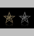 gold and silver star vector image