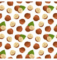 pattern with hazelnut vector image vector image