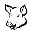 pig head vector image