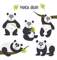 set of isolated panda bear vector image vector image
