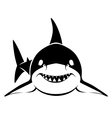 shark face vector image vector image