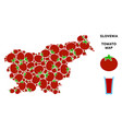 slovenia map composition of tomato vector image vector image