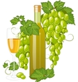 White wine bottle and wineglass vector image vector image